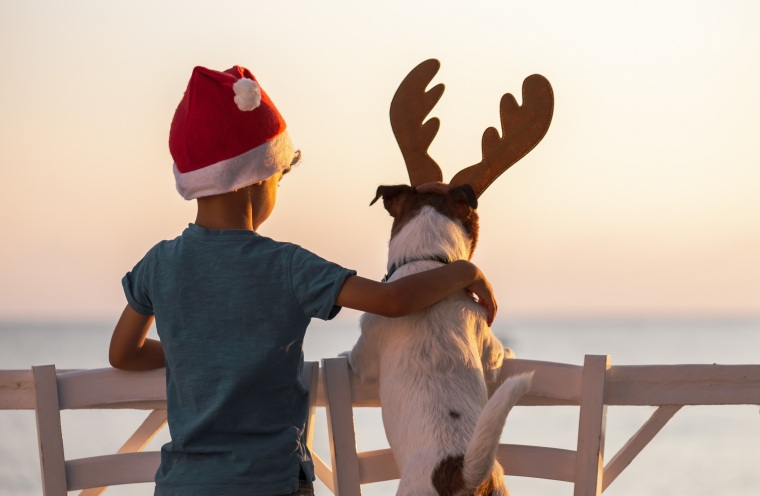 Christmas on a beach concept with boy wearing Santa Clause hat and dog with reindeer antlers headband