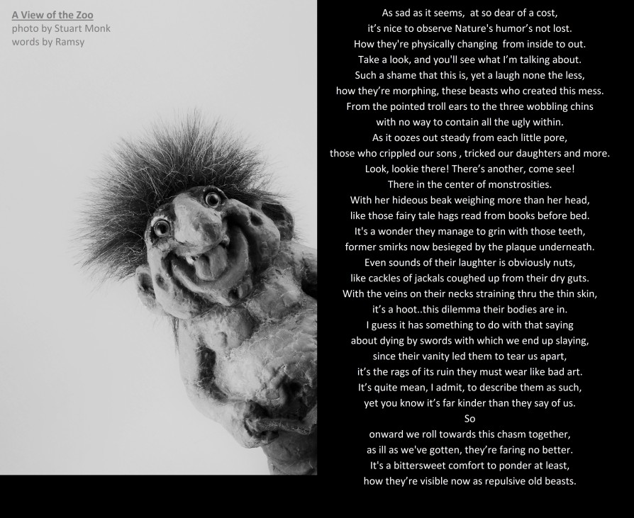 souvenir troll