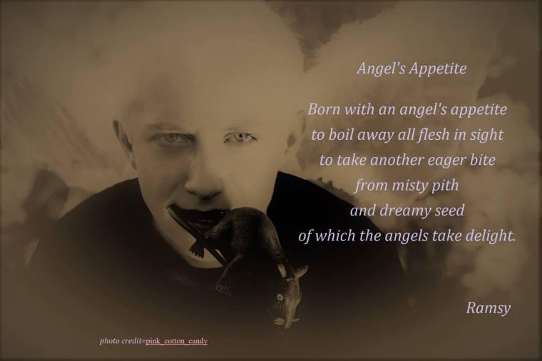 Angel's Appetite